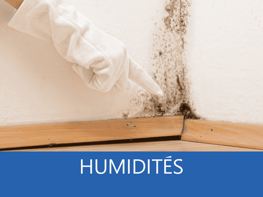 expertise humidité 54, expert humidité Nancy, cause moisissure 54, solutions humidité Nancy,